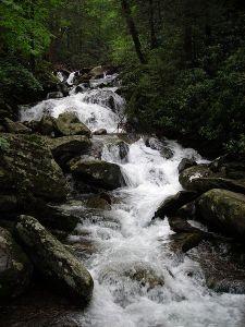 Le Conte Creek/ photo by Scott Basford