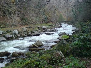 East Lyn River in Exmoor (more about this in a later post)