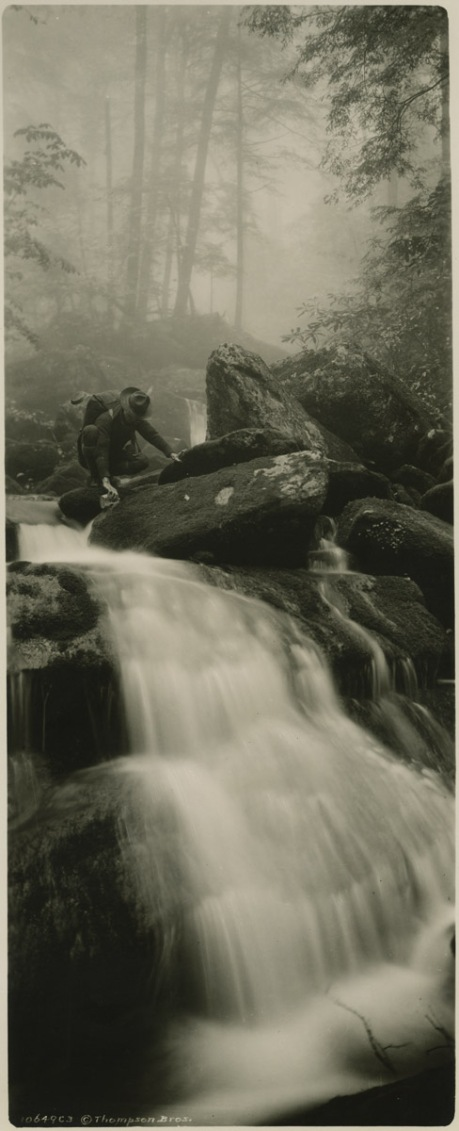 An unnamed waterfall on LeConte, from the Thompson collection