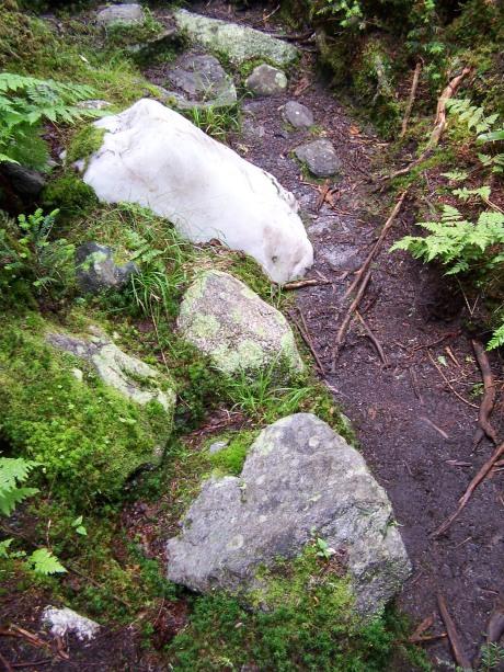 Oddball boulder