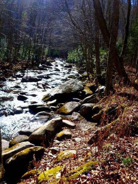 Big Creek is, well, hmmm, big.