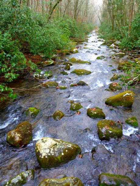 Oconoluftee River.