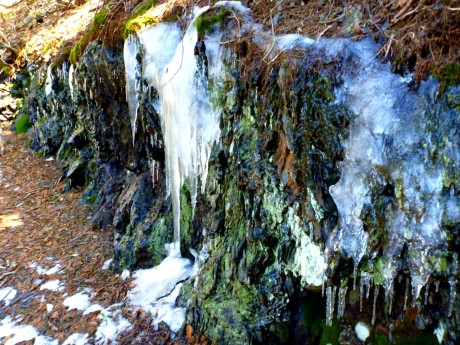 Icicles along the trail.