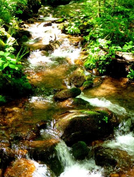 Transparent (Fisher Creek).