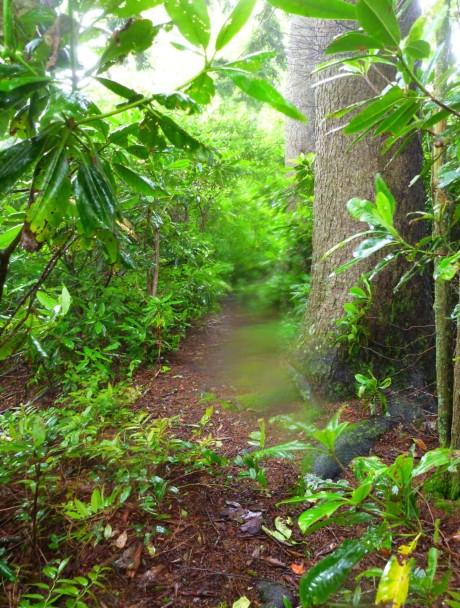 Sugarland-Chimneys connector manway.