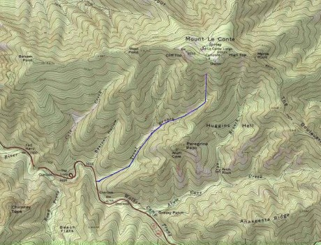 Our route up Trout Branch.