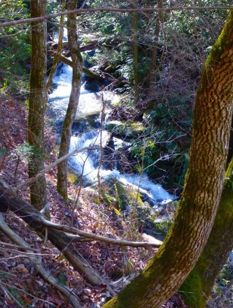Cascades.