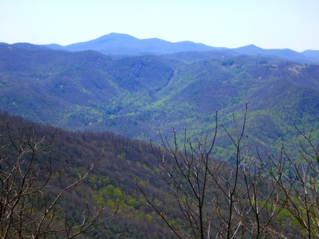 View from Wolf Rock.