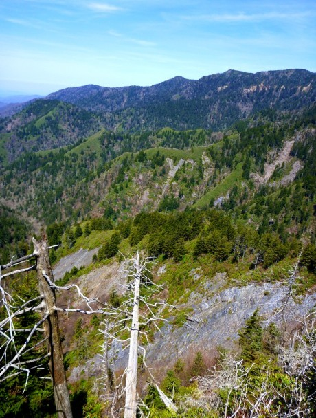 Heath-covered ridges and mighty LeConte.
