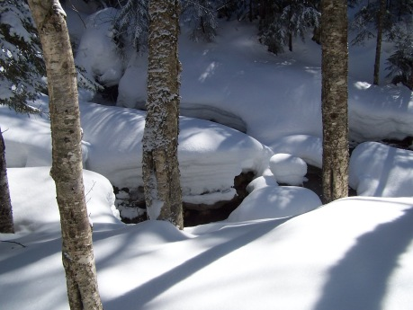 Freshly fallen snow on Dry Brook, White Mts., New Hampshire
