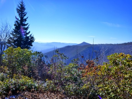 View to the southwest from Fox Hunters Camp in the Plott Balsams.