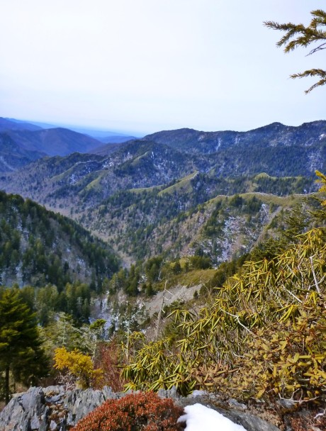 View from ridge where we topped out, toward the subsidiary ridges of LeConte.