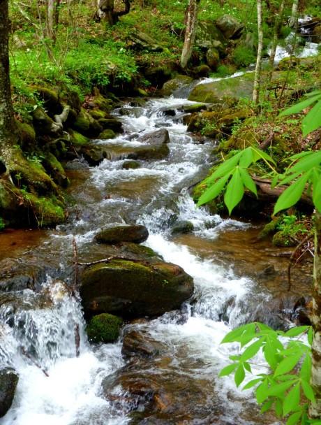 Fisher Creek, gateway to my favorite backyard mountains.