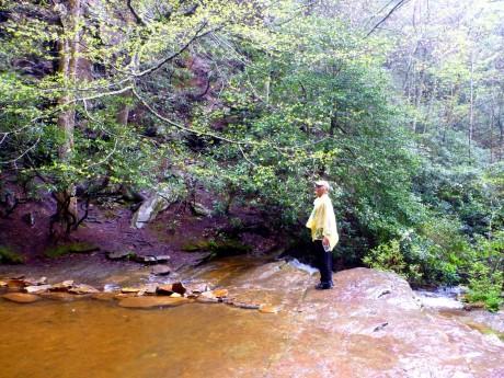 Gary admires the cascade.